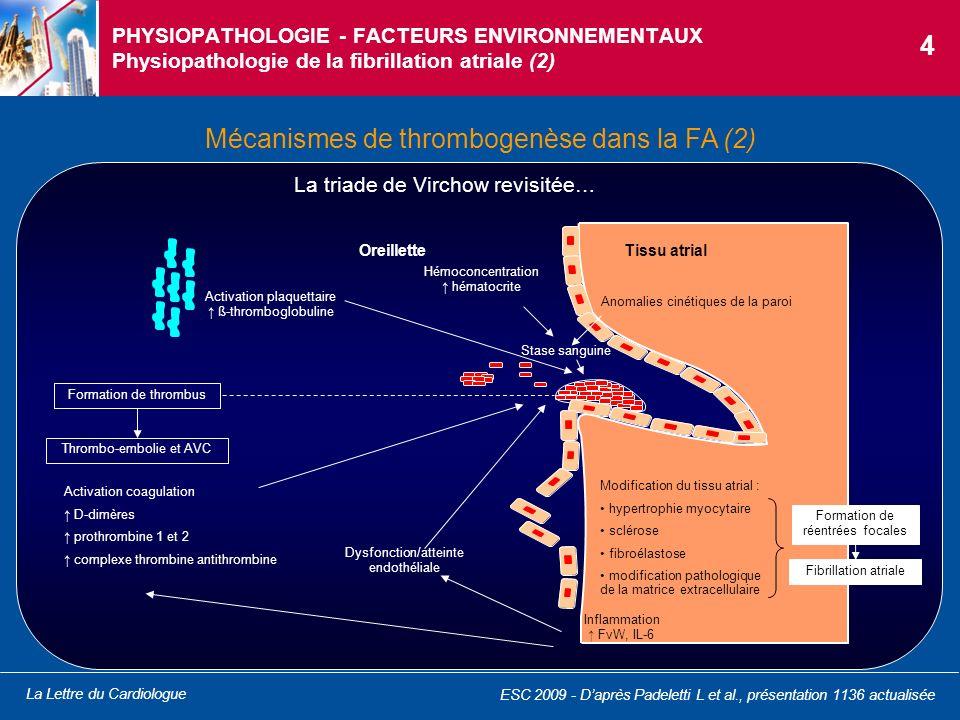 La Lettre du Cardiologue PHYSIOPATHOLOGIE - FACTEURS ENVIRONNEMENTAUX Physiopathologie de la fibrillation atriale (2) Mécanismes de thrombogenèse dans