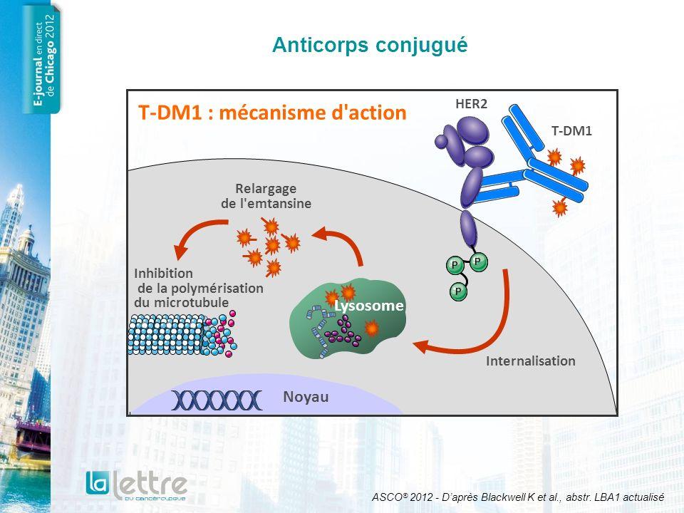 Anticorps conjugué T-DM1 : mécanisme d'action ASCO ® 2012 - Daprès Blackwell K et al., abstr. LBA1 actualisé T-DM1 Internalisation Relargage de l'emta