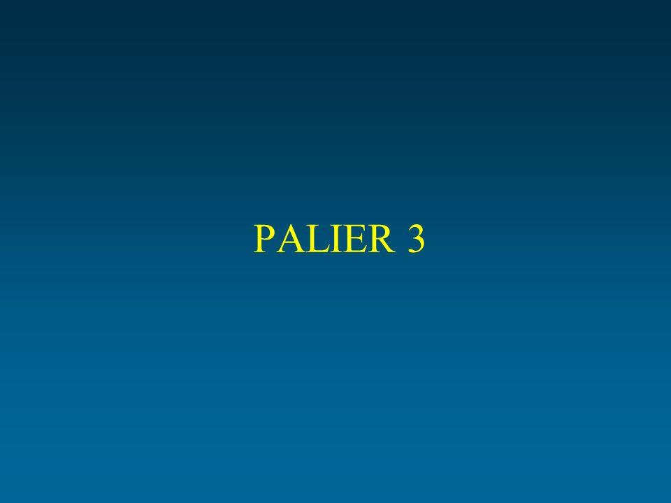 PALIER 3