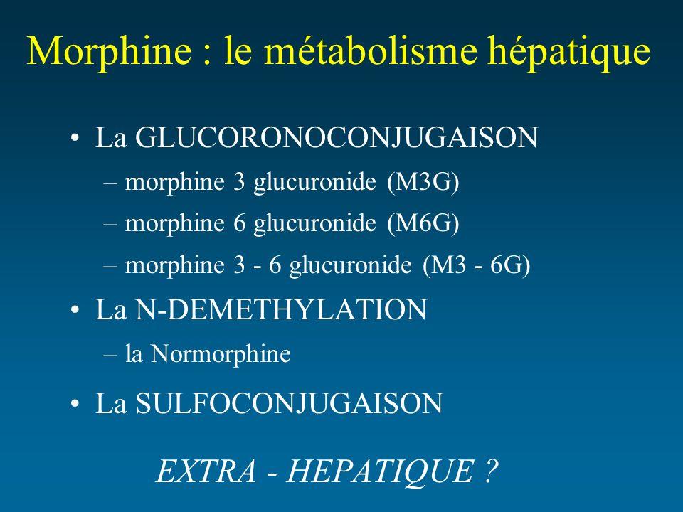 Morphine : le métabolisme hépatique La GLUCORONOCONJUGAISON –morphine 3 glucuronide (M3G) –morphine 6 glucuronide (M6G) –morphine 3 - 6 glucuronide (M