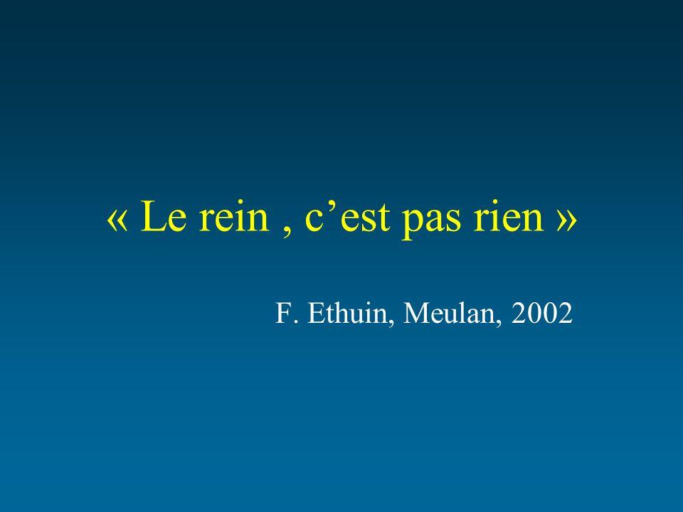 « Le rein, cest pas rien » F. Ethuin, Meulan, 2002
