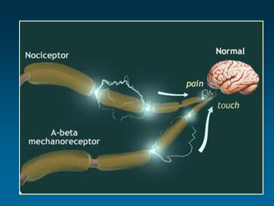 Morphine, M6G, M3G dans le LCR de linsuffisant rénal Dhonneur, Anesthesiology 1994