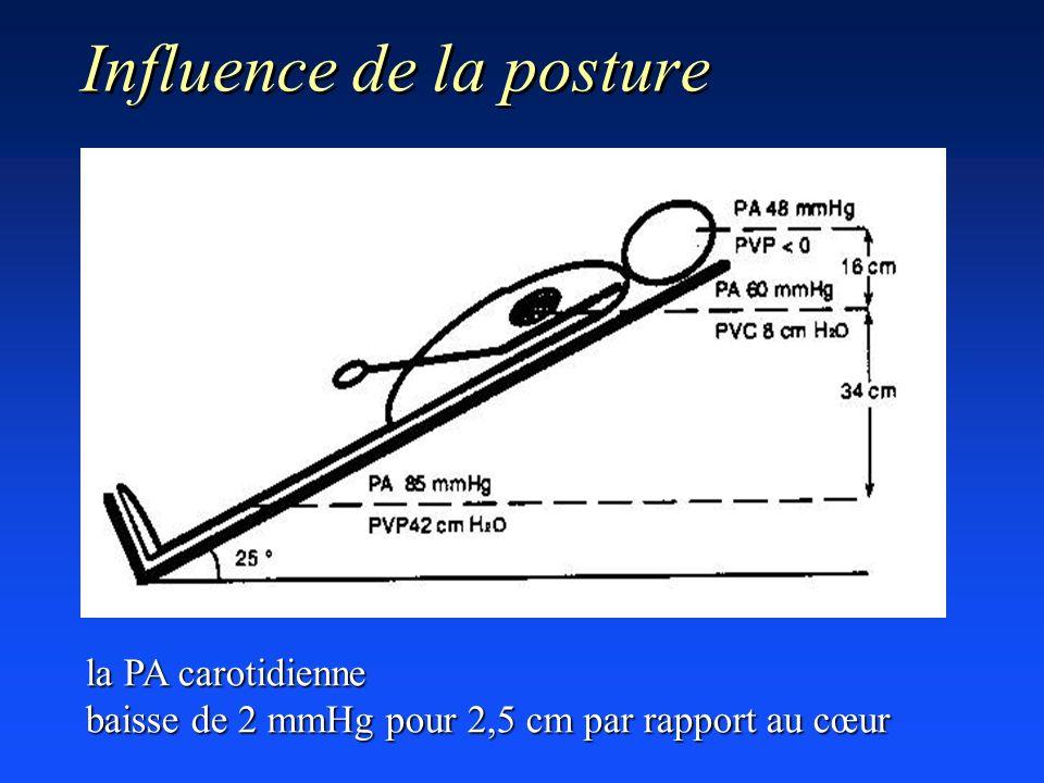 Influence de la posture la PA carotidienne baisse de 2 mmHg pour 2,5 cm par rapport au cœur