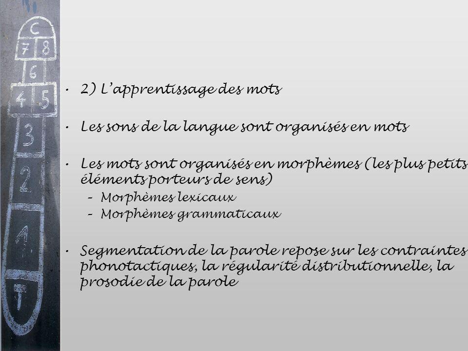 2) Lapprentissage des mots Les sons de la langue sont organisés en mots Les mots sont organisés en morphèmes (les plus petits éléments porteurs de sen