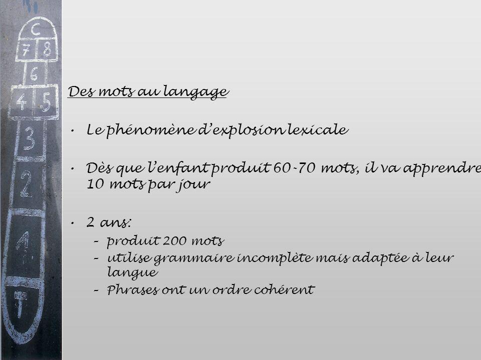 Des mots au langage Le phénomène dexplosion lexicale Dès que lenfant produit 60-70 mots, il va apprendre 10 mots par jour 2 ans: –produit 200 mots –ut