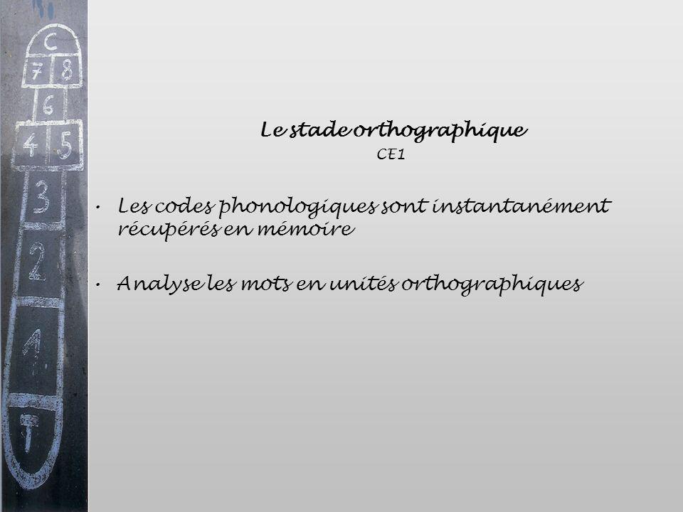 Le stade orthographique CE1 Les codes phonologiques sont instantanément récupérés en mémoire Analyse les mots en unités orthographiques