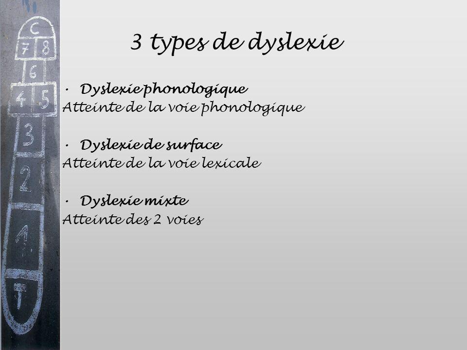 3 types de dyslexie Dyslexie phonologique Atteinte de la voie phonologique Dyslexie de surface Atteinte de la voie lexicale Dyslexie mixte Atteinte de