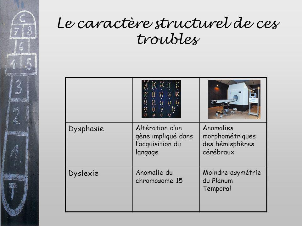 Le caractère structurel de ces troubles Dysphasie Altération dun gène impliqué dans lacquisition du langage Anomalies morphométriques des hémisphères