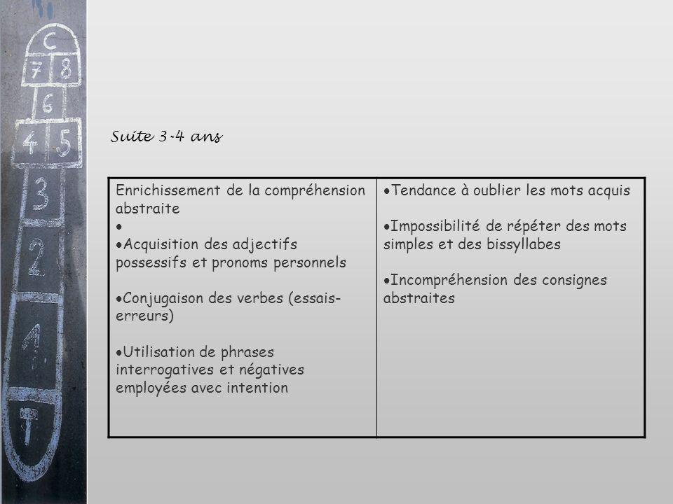 Enrichissement de la compréhension abstraite Acquisition des adjectifs possessifs et pronoms personnels Conjugaison des verbes (essais- erreurs) Utili