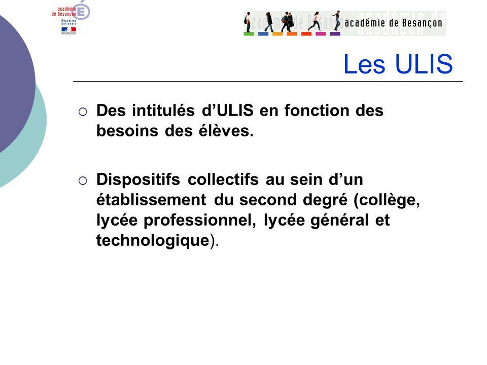 Des intitulés dULIS en fonction des besoins des élèves. Dispositifs collectifs au sein dun établissement du second degré (collège, lycée professionnel