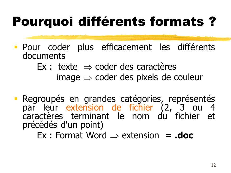 Pourquoi différents formats ? Pour coder plus efficacement les différents documents Ex : texte coder des caractères image coder des pixels de couleur