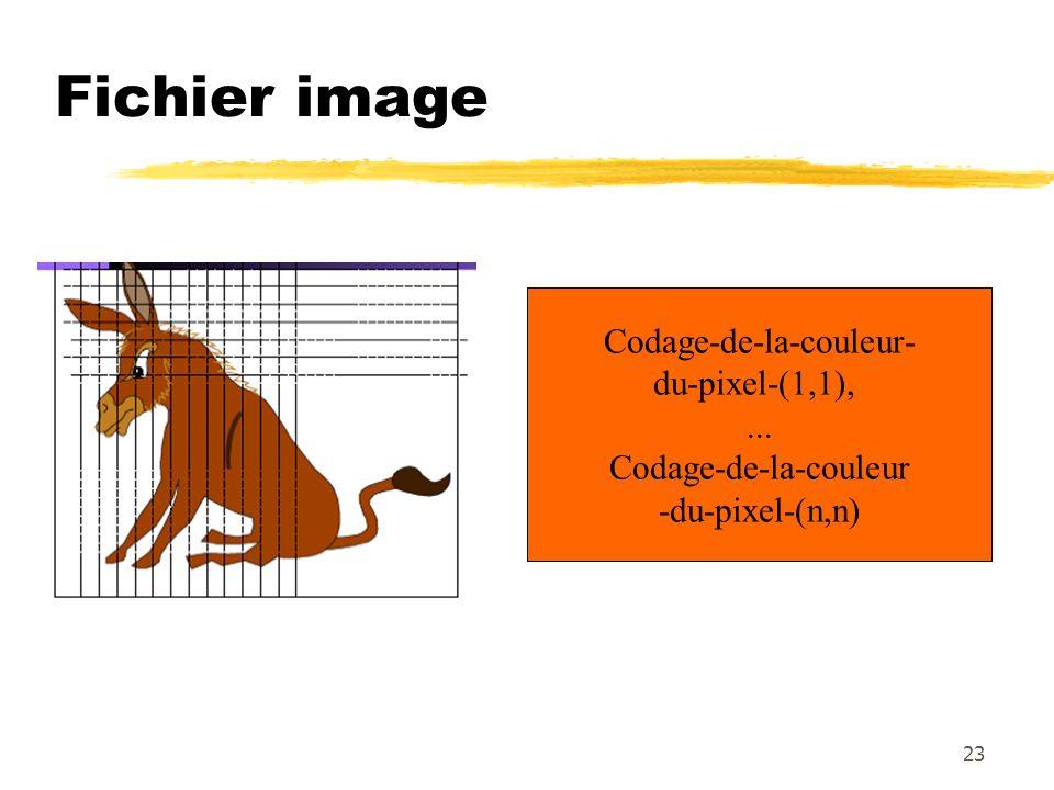 Fichier image Codage-de-la-couleur- du-pixel-(1,1),... Codage-de-la-couleur -du-pixel-(n,n) 23