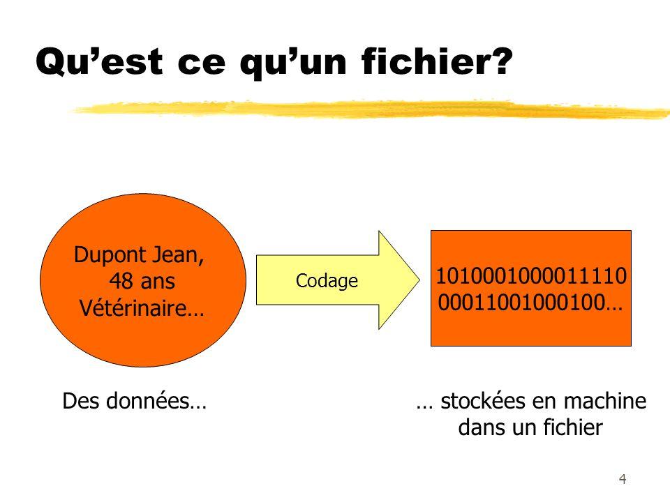 Quest ce quun fichier? Dupont Jean, 48 ans Vétérinaire… 1010001000011110 00011001000100… Des données…… stockées en machine dans un fichier Codage 4