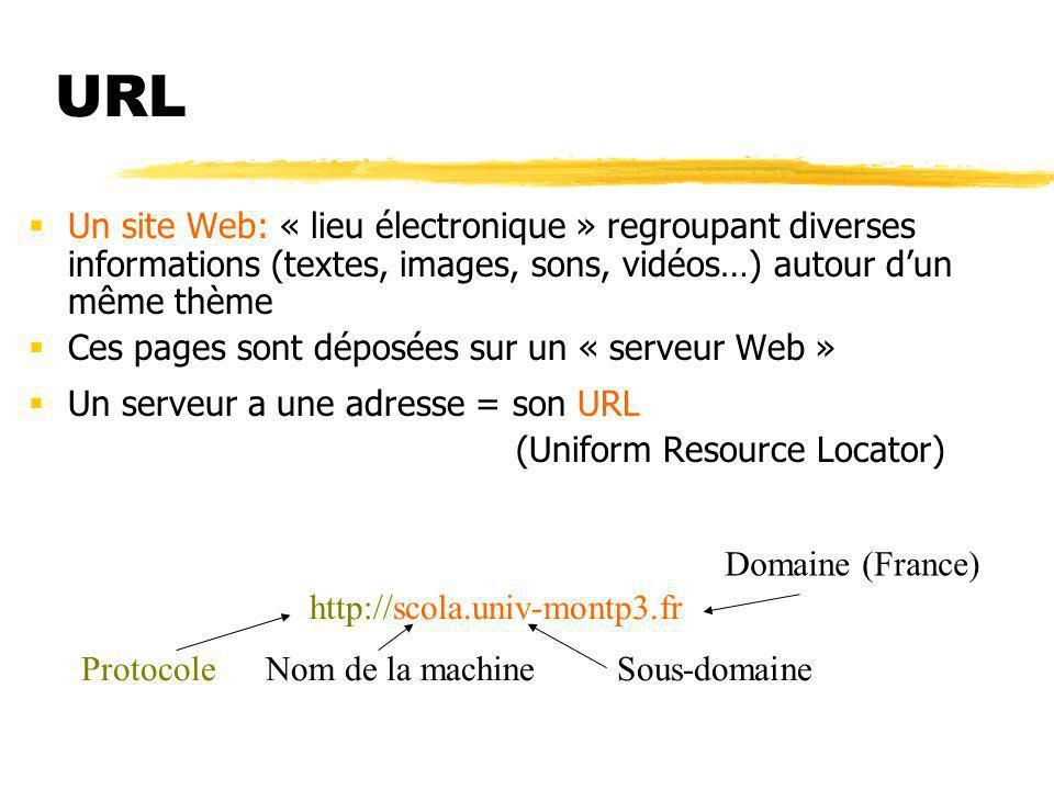 URL Un site Web: « lieu électronique » regroupant diverses informations (textes, images, sons, vidéos…) autour dun même thème Un site est formé de pages Web.