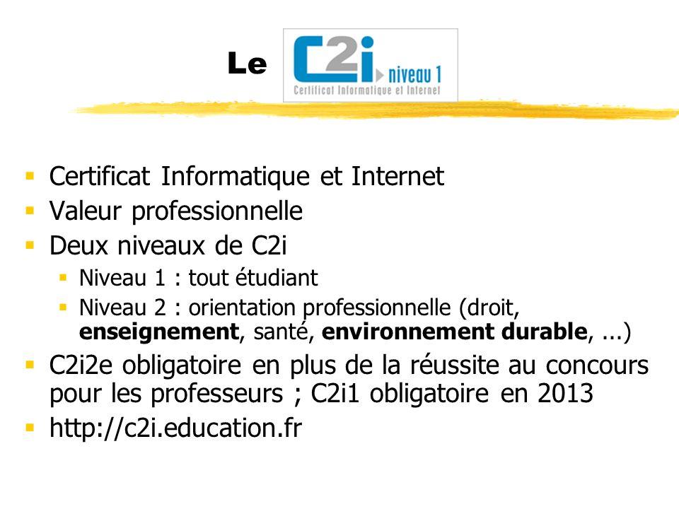 Le Certificat Informatique et Internet Valeur professionnelle Deux niveaux de C2i Niveau 1 : tout étudiant Niveau 2 : orientation professionnelle (dro