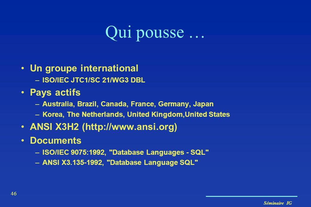 Séminaire IG 46 Qui pousse … Un groupe international –ISO/IEC JTC1/SC 21/WG3 DBL Pays actifs –Australia, Brazil, Canada, France, Germany, Japan –Korea
