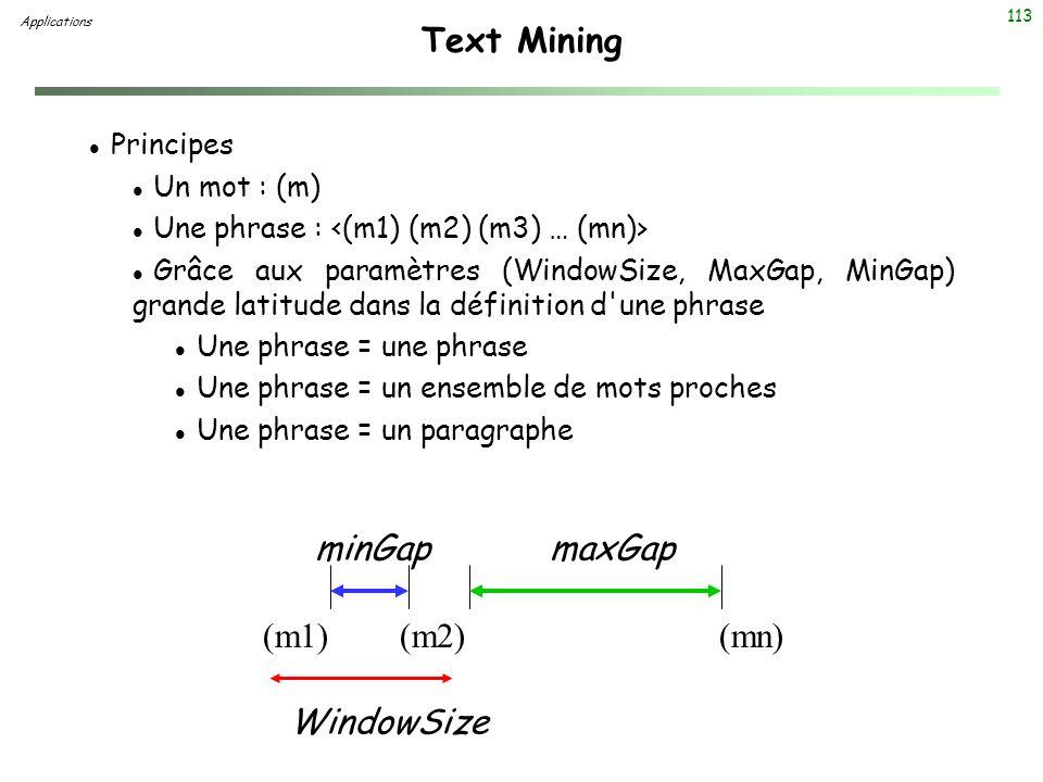 113 Text Mining l Principes l Un mot : (m) l Une phrase : l Grâce aux paramètres (WindowSize, MaxGap, MinGap) grande latitude dans la définition d'une
