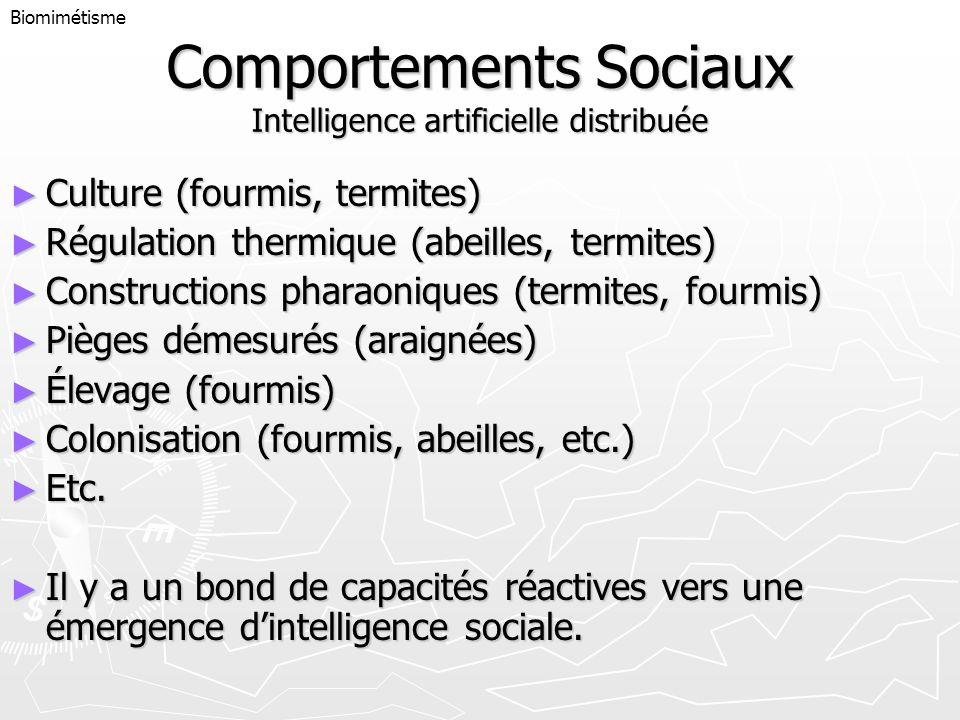 Comportements Sociaux Intelligence artificielle distribuée Culture (fourmis, termites) Culture (fourmis, termites) Régulation thermique (abeilles, ter