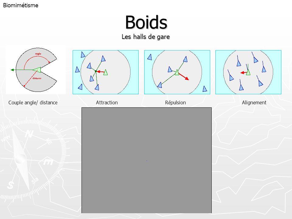 Boids Les halls de gare Biomimétisme Couple angle/ distanceAttraction RépulsionAlignement