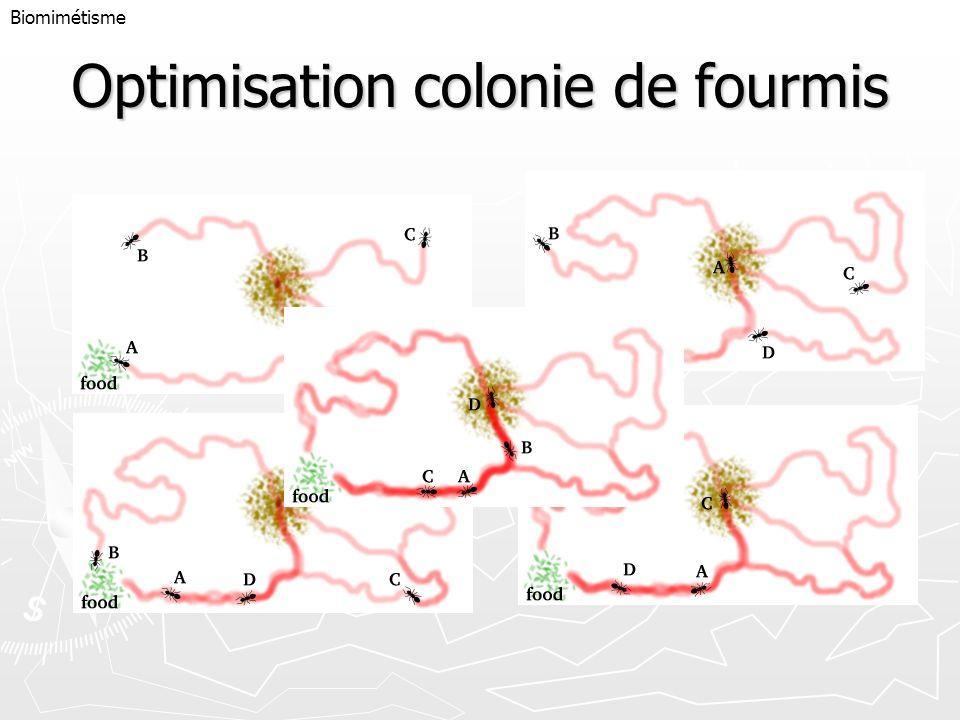 Optimisation colonie de fourmis Biomimétisme