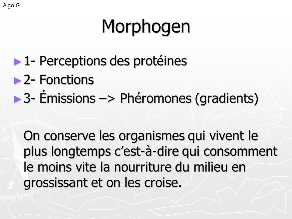 Morphogen 1- Perceptions des protéines 1- Perceptions des protéines 2- Fonctions 2- Fonctions 3- Émissions –> Phéromones (gradients) 3- Émissions –> P
