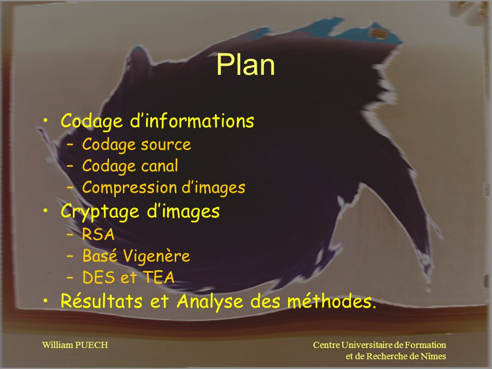 Centre Universitaire de Formation et de Recherche de Nîmes William PUECH Plan Codage dinformations –Codage source –Codage canal –Compression dimages C