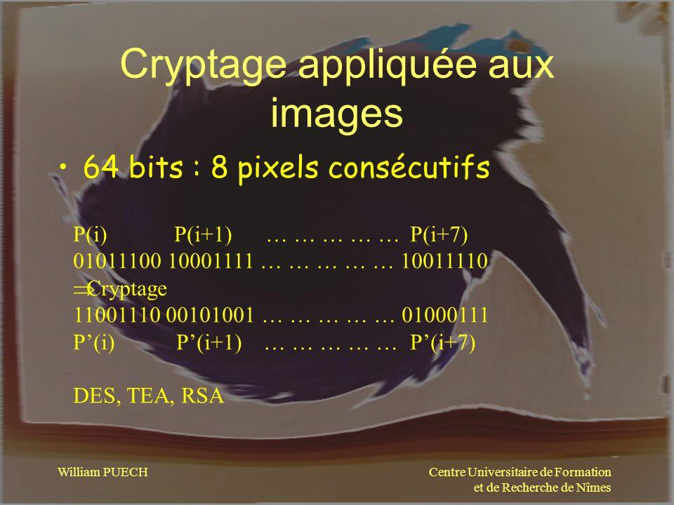 Centre Universitaire de Formation et de Recherche de Nîmes William PUECH Cryptage appliquée aux images 64 bits : 8 pixels consécutifs P(i) P(i+1) … …
