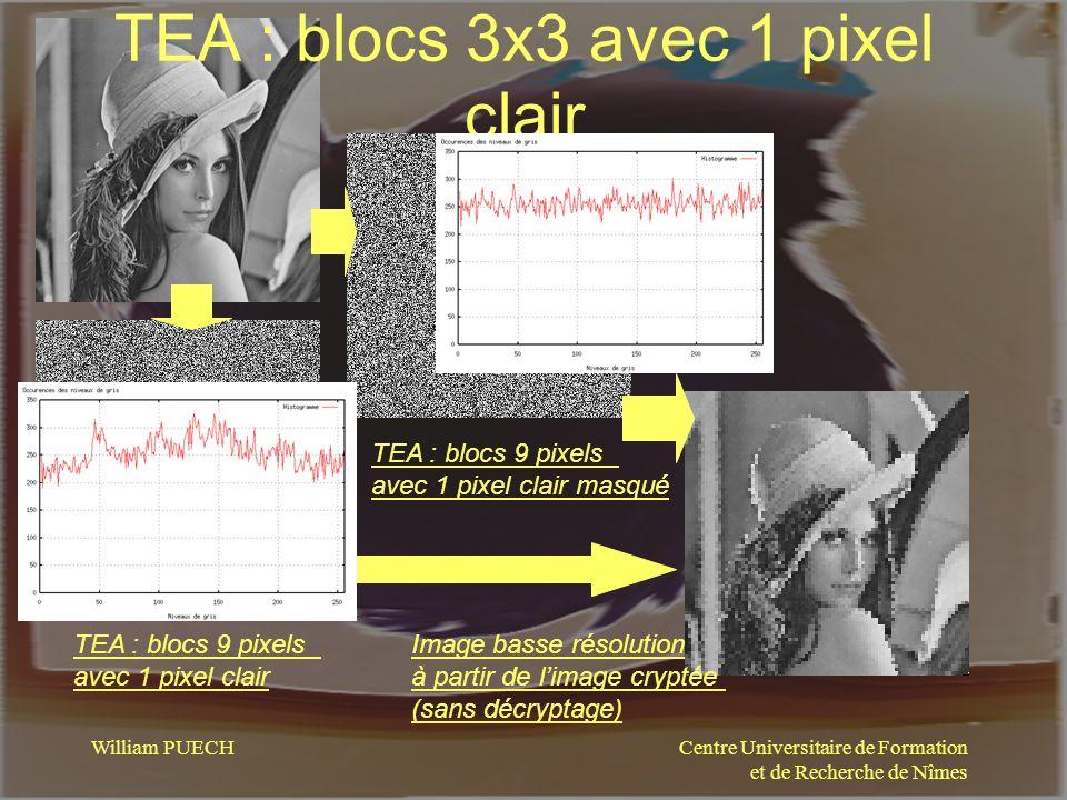 Centre Universitaire de Formation et de Recherche de Nîmes William PUECH TEA : blocs 3x3 avec 1 pixel clair TEA : blocs 9 pixels avec 1 pixel clair TE