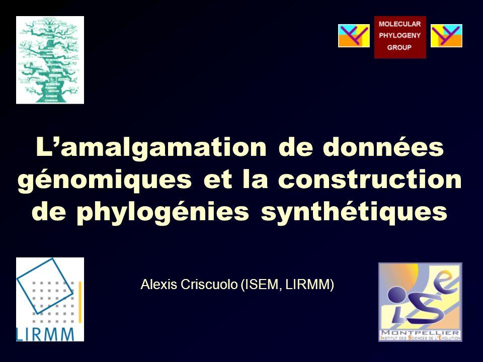 Lamalgamation de données génomiques et la construction de phylogénies synthétiques Alexis Criscuolo (ISEM, LIRMM)