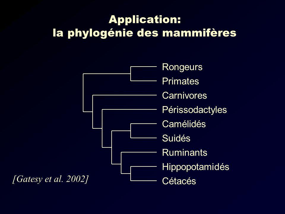 Application: la phylogénie des mammifères Carnivores Périssodactyles Camélidés Suidés Ruminants Hippopotamidés Cétacés Rongeurs Primates [Gatesy et al.