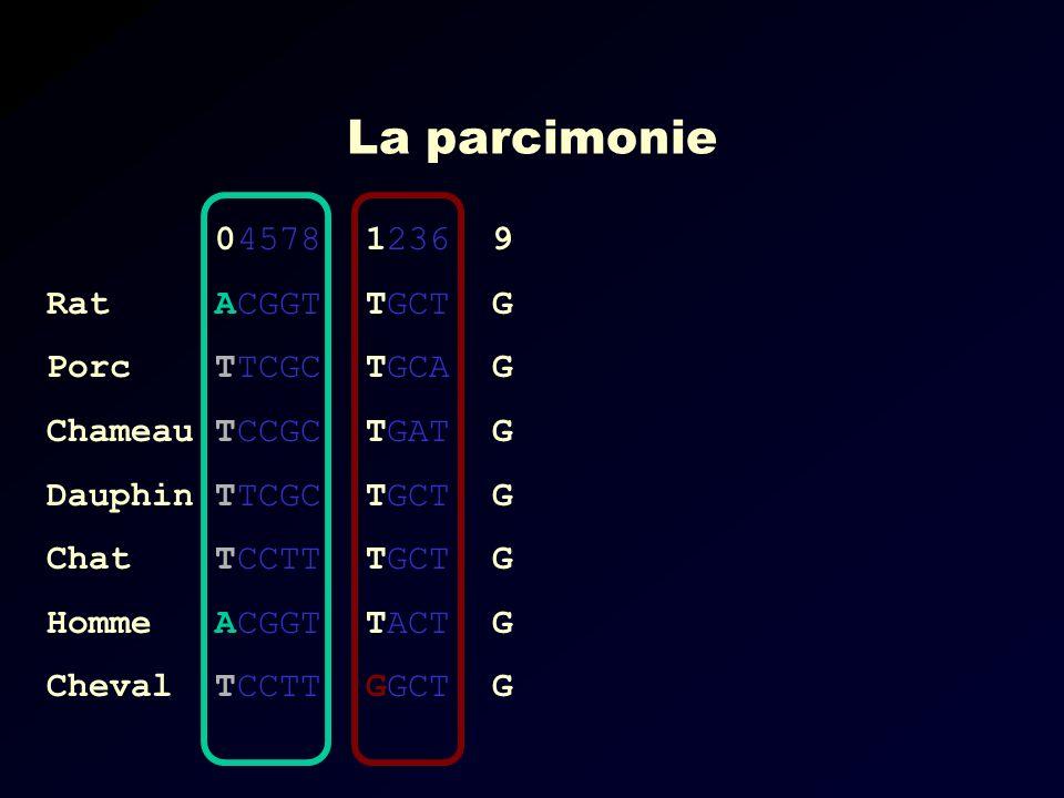 La parcimonie 04578 Rat ACGGT Porc TTCGC Chameau TCCGC Dauphin TTCGC Chat TCCTT Homme ACGGT Cheval TCCTT 1236 9 TGCT G TGCA G TGAT G TGCT G TACT G GGCT G