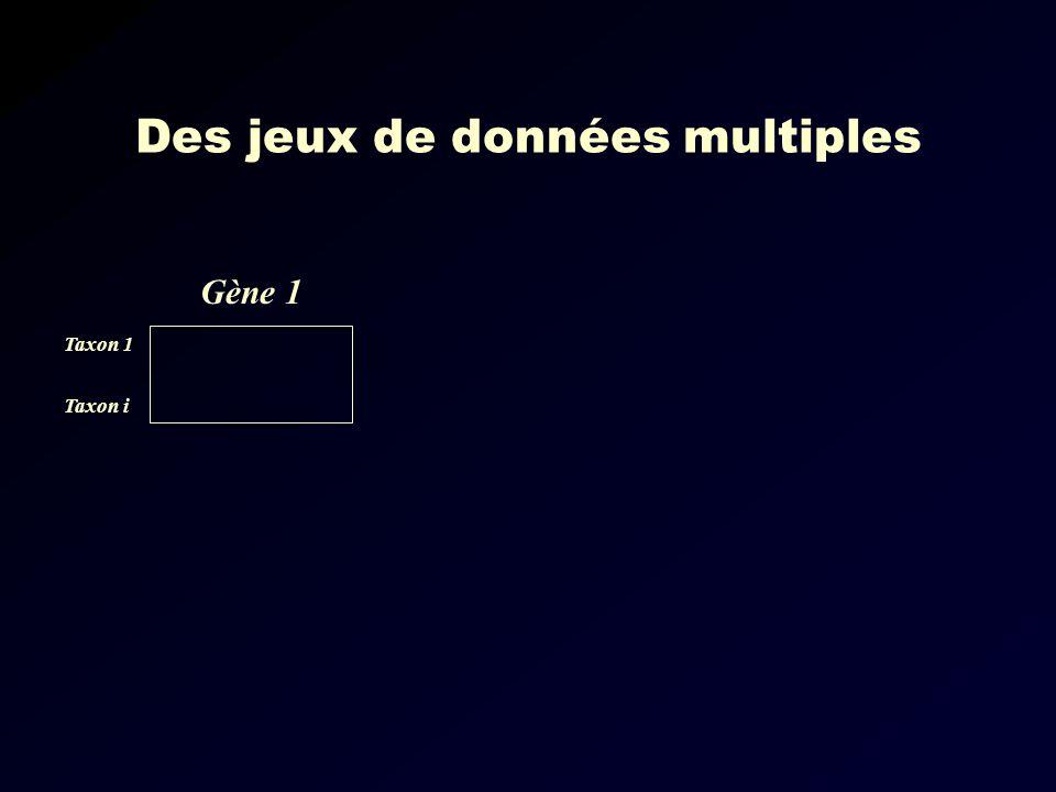 Des jeux de données multiples Gène 1 Taxon 1 Taxon i