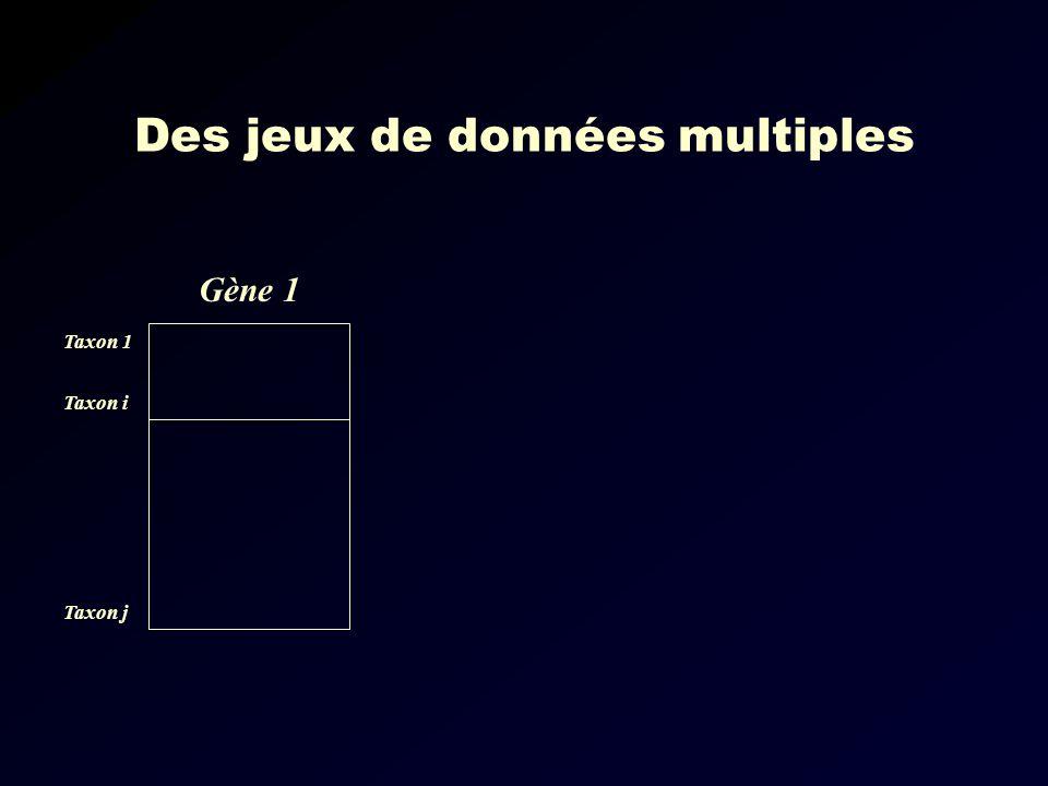 Des jeux de données multiples Gène 1 Taxon 1 Taxon i Taxon j