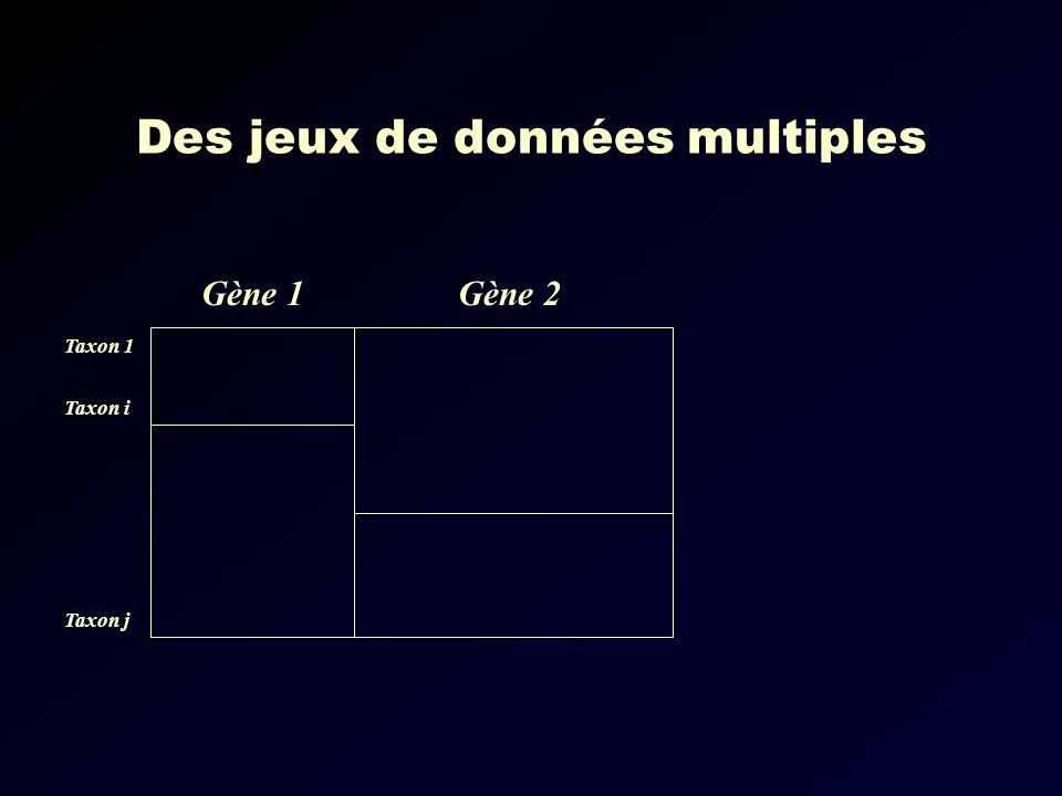 Des jeux de données multiples Gène 1Gène 2 Taxon 1 Taxon i Taxon j