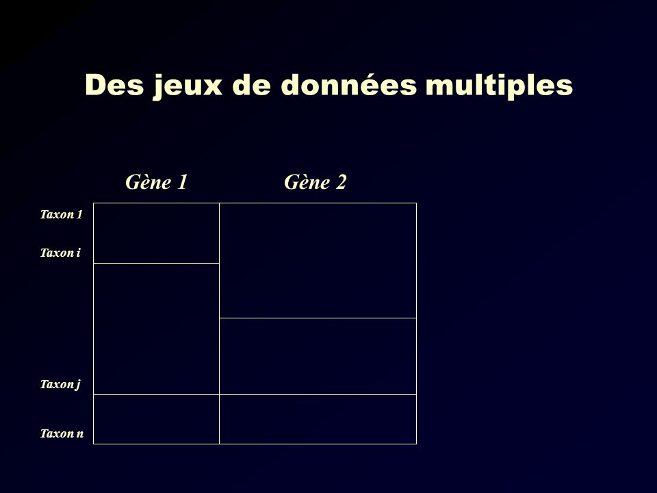Des jeux de données multiples Gène 1Gène 2 Taxon 1 Taxon i Taxon j Taxon n