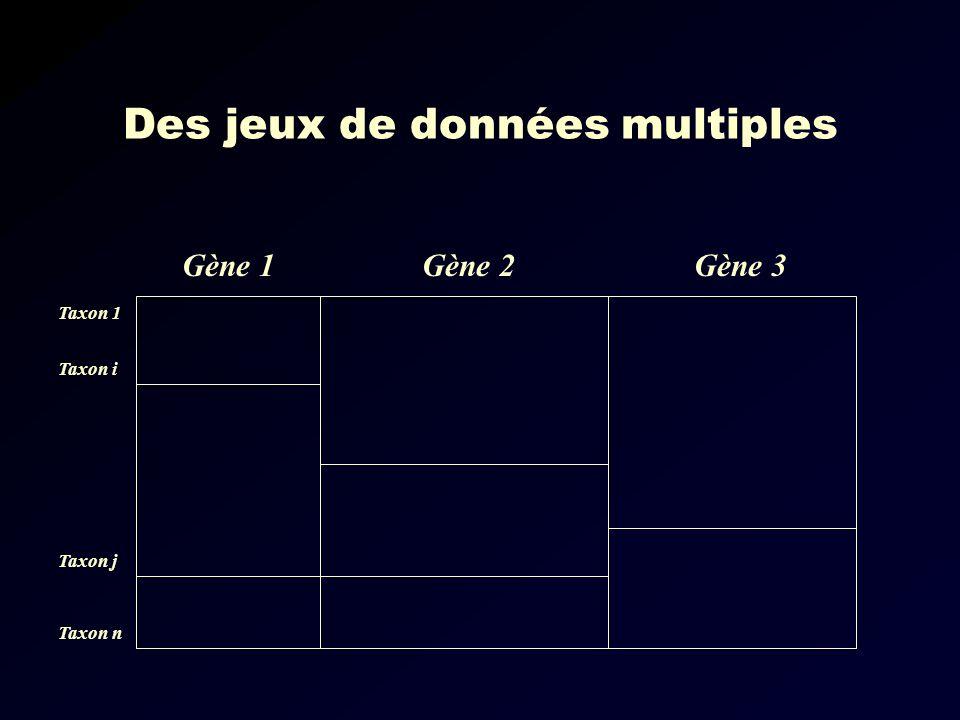Des jeux de données multiples Gène 1Gène 3Gène 2 Taxon 1 Taxon i Taxon j Taxon n