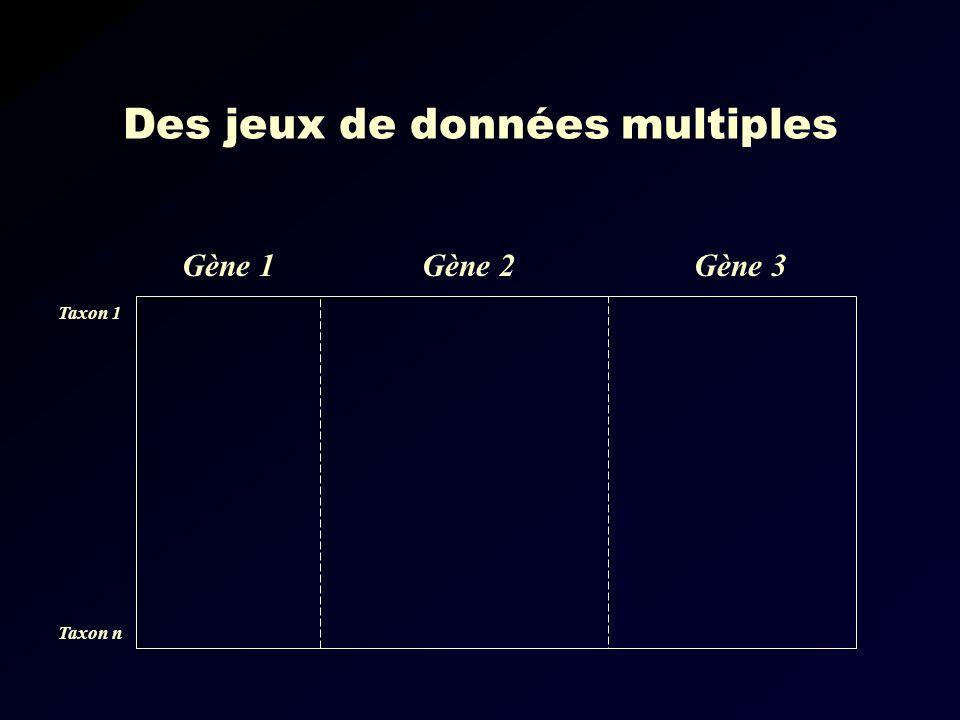 Des jeux de données multiples Gène 1Gène 3Gène 2 Taxon 1 Taxon n