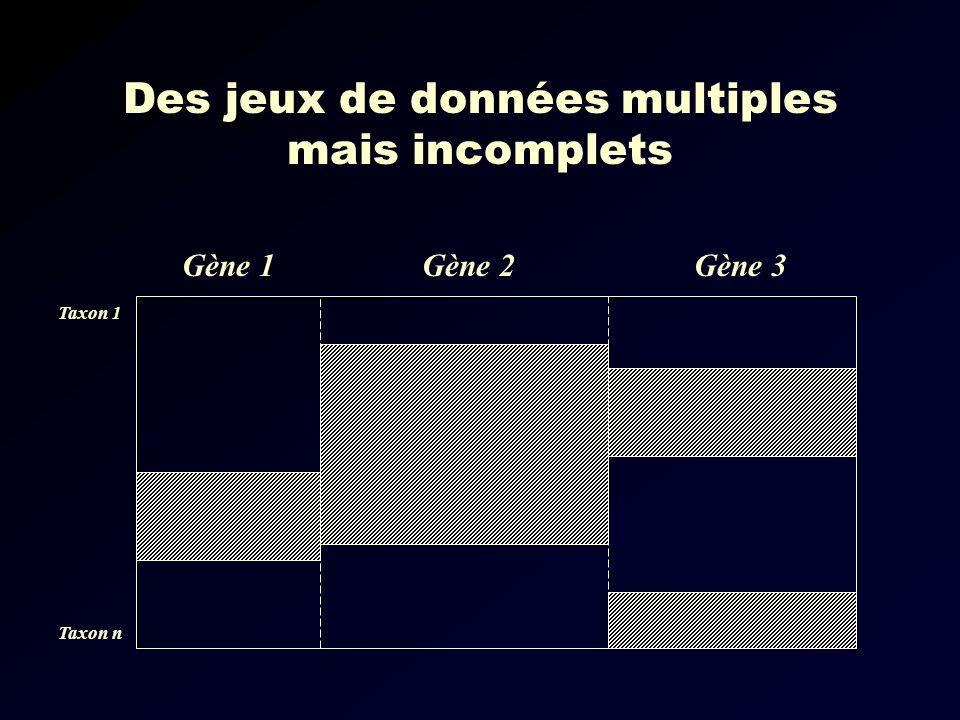 Des jeux de données multiples mais incomplets Gène 1Gène 3Gène 2 Taxon 1 Taxon n