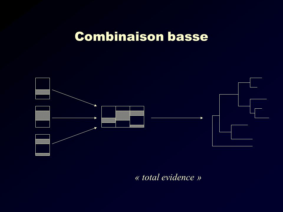 Combinaison basse « total evidence »