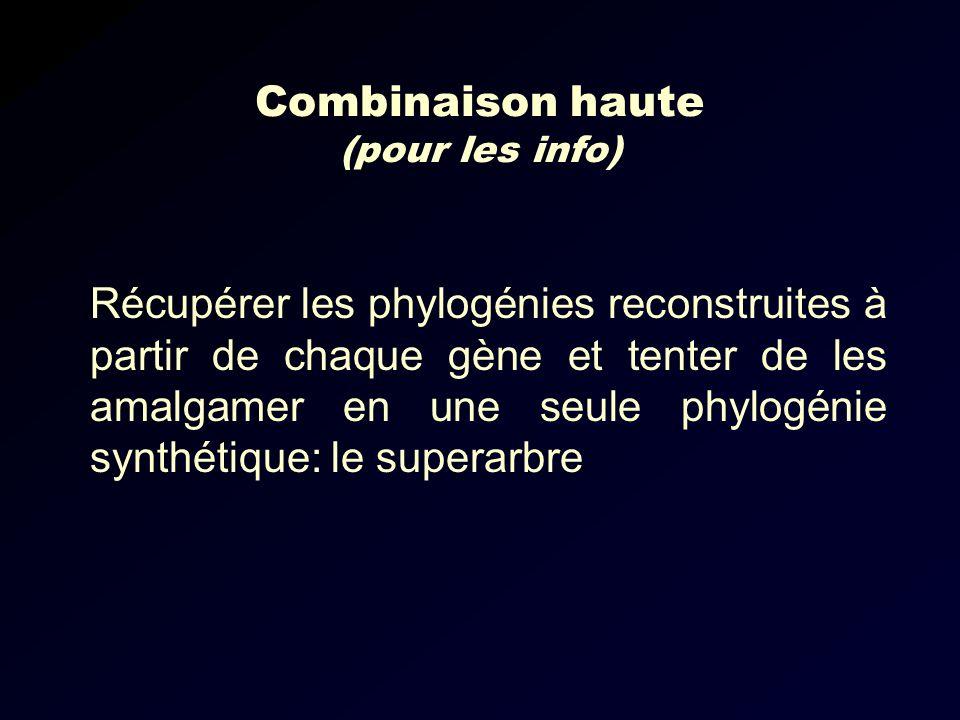 Combinaison haute (pour les info) Récupérer les phylogénies reconstruites à partir de chaque gène et tenter de les amalgamer en une seule phylogénie synthétique: le superarbre