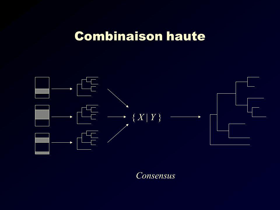 Combinaison haute Consensus { X | Y }