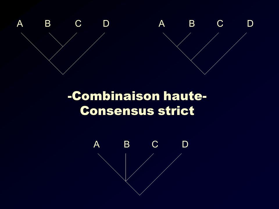 -Combinaison haute- Consensus strict ABCDABCD ABCD