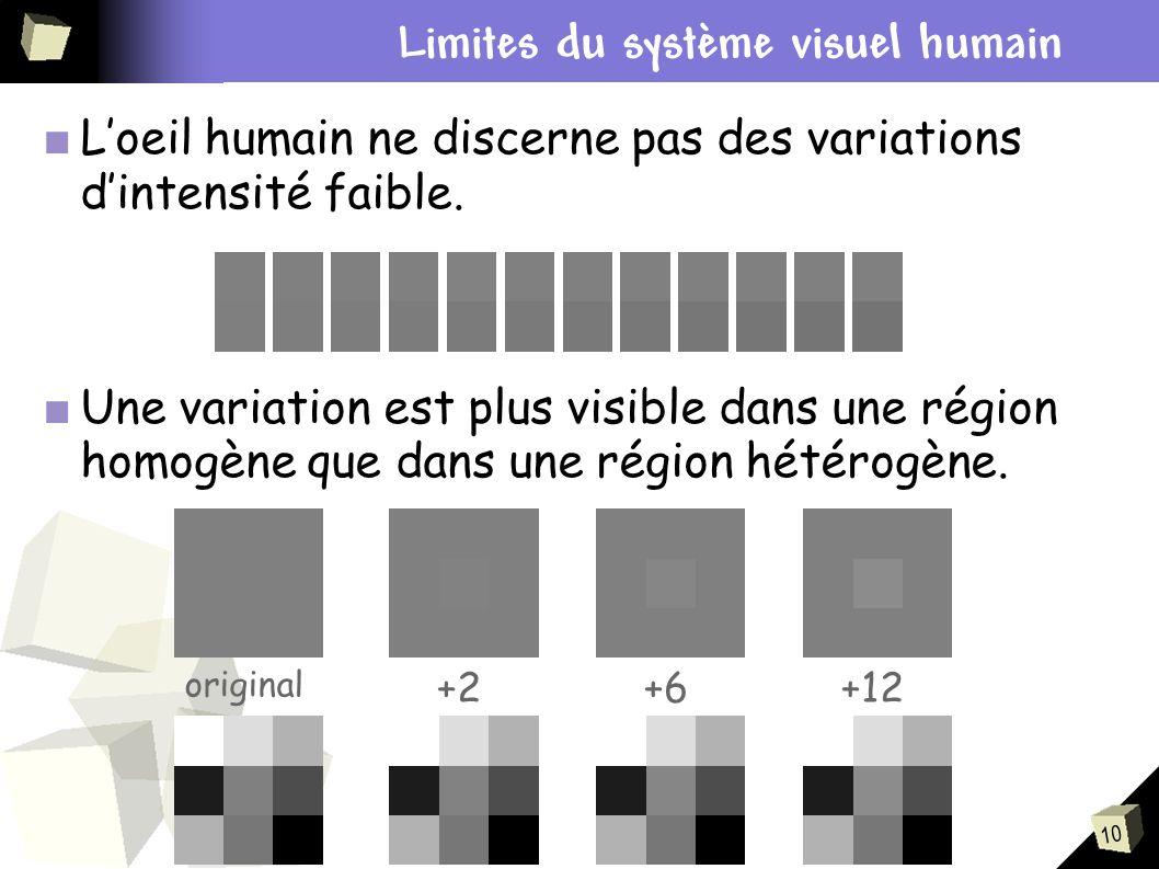 10 Contexte du stage Loeil humain ne discerne pas des variations dintensité faible. Une variation est plus visible dans une région homogène que dans u