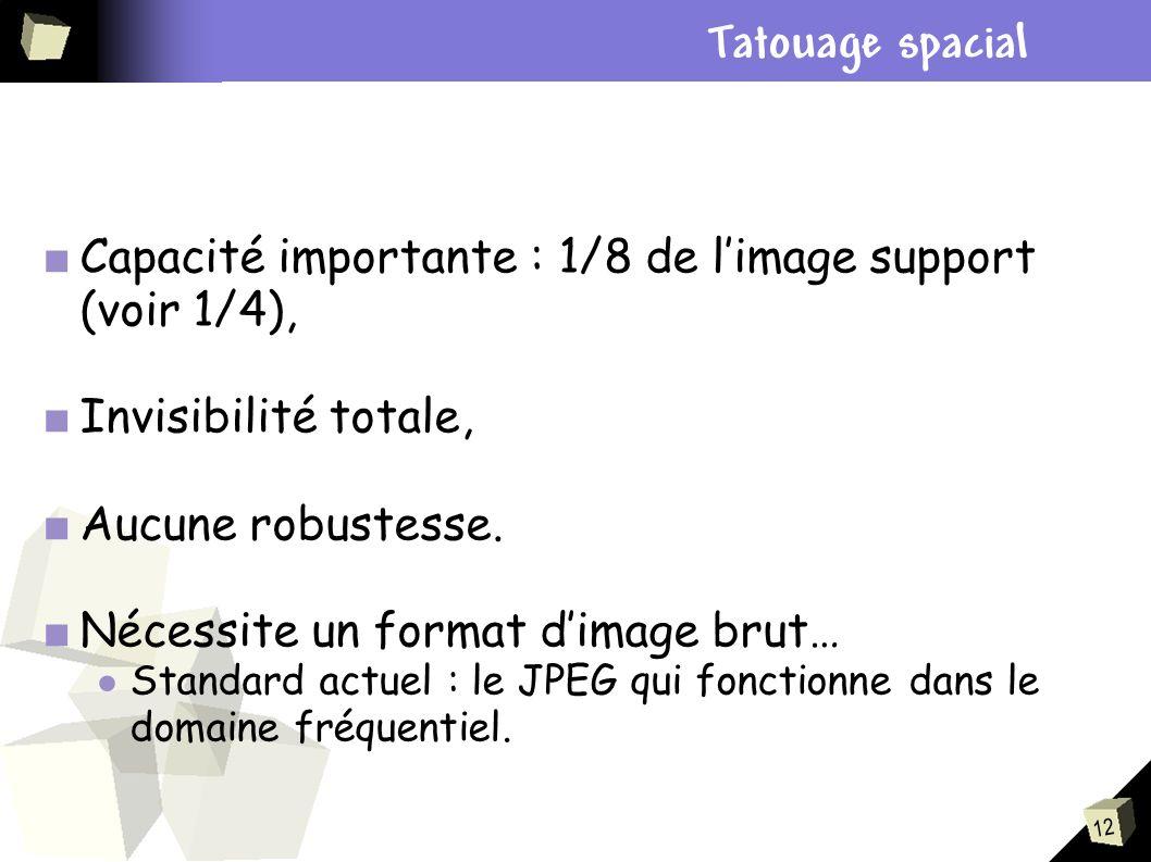 12 Capacité importante : 1/8 de limage support (voir 1/4), Invisibilité totale, Aucune robustesse. Nécessite un format dimage brut… Standard actuel :