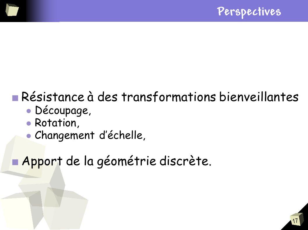 17 Résistance à des transformations bienveillantes Découpage, Rotation, Changement déchelle, Apport de la géométrie discrète. Plan Perspectives