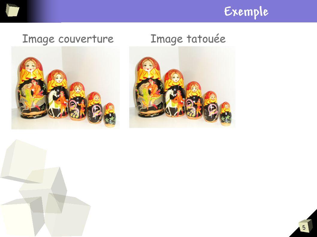5 Plan Exemple Image couvertureImage tatouée
