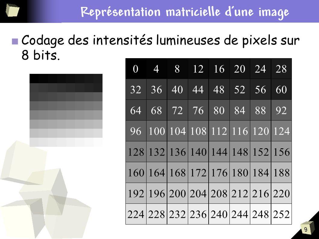 9 Codage des intensités lumineuses de pixels sur 8 bits. Contexte du stage Représentation matricielle dune image 0481216202428 3236404448525660 646872