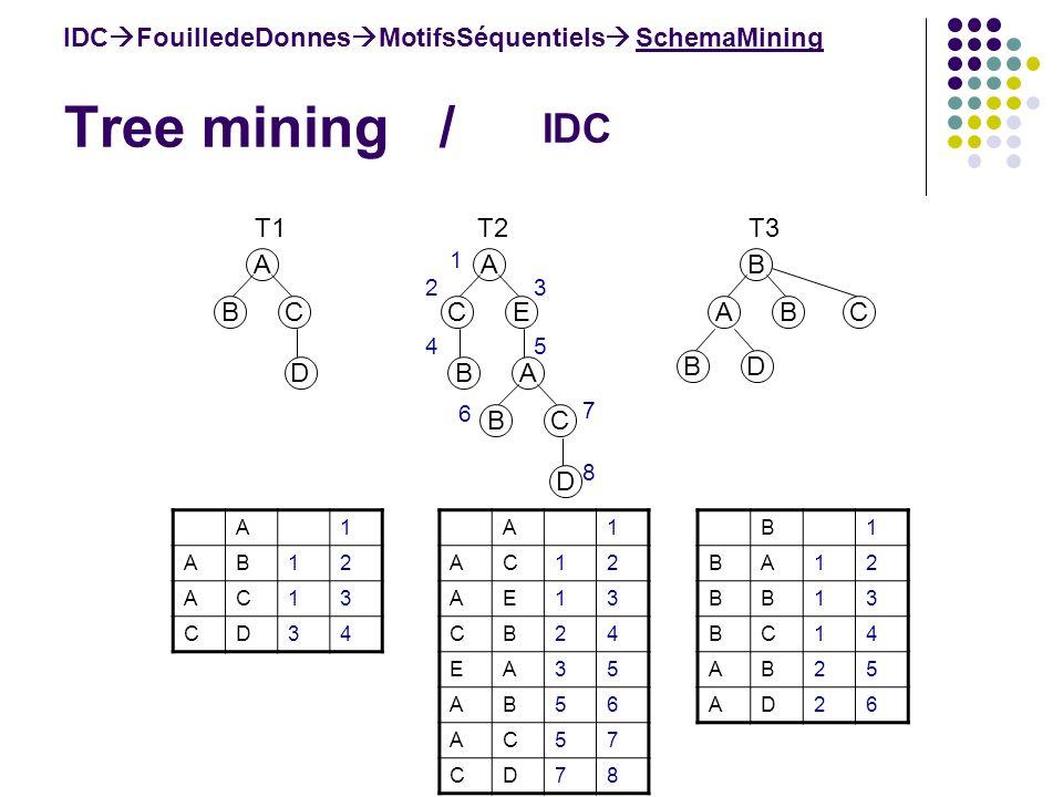 Tree mining / B1 BA12 BB13 BC14 AB25 AD26 A1 AB12 AC13 CD34 IDC FouilledeDonnes MotifsSéquentiels SchemaMining IDC A BC D A CE BA BC D B ABC BD T1 T2T3 A1 AC12 AE13 CB24 EA35 AB56 AC57 CD78 1 23 45 6 7 8