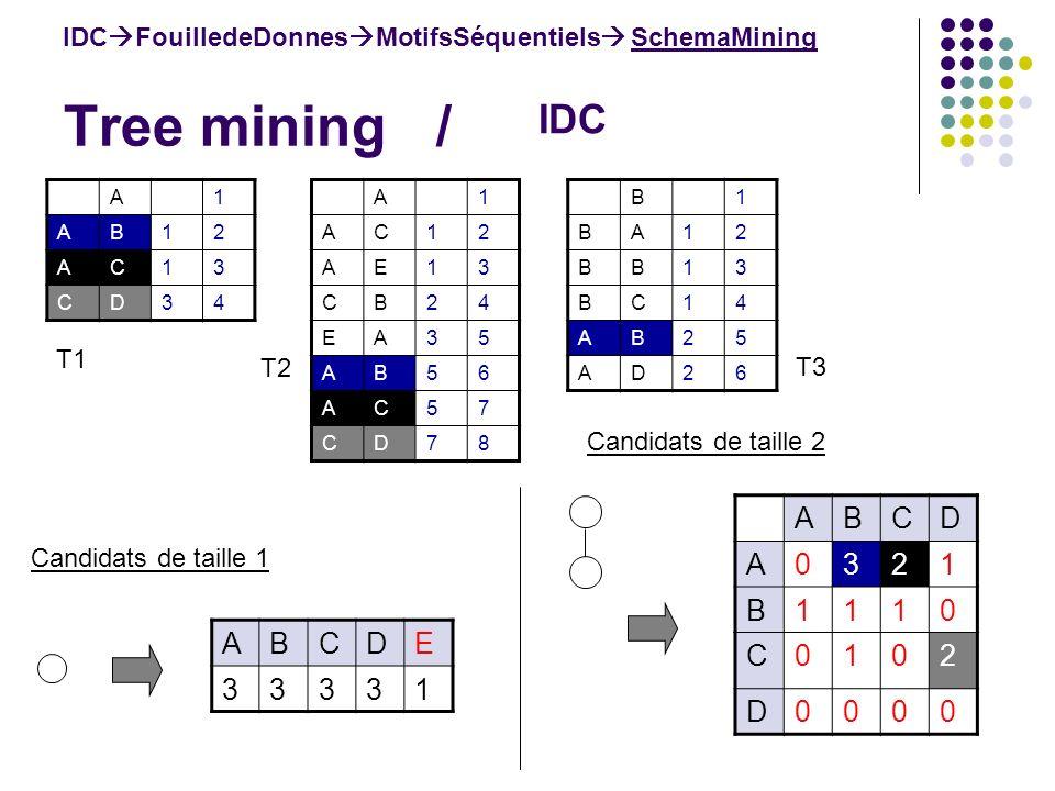 Tree mining / ABCDE 33331 IDC FouilledeDonnes MotifsSéquentiels SchemaMining IDC Candidats de taille 1 Candidats de taille 2 ABCD A0321 B1110 C0102 D0000 B1 BA12 BB13 BC14 AB25 AD26 A1 AB12 AC13 CD34 A1 AC12 AE13 CB24 EA35 AB56 AC57 CD78 T1 T2 T3