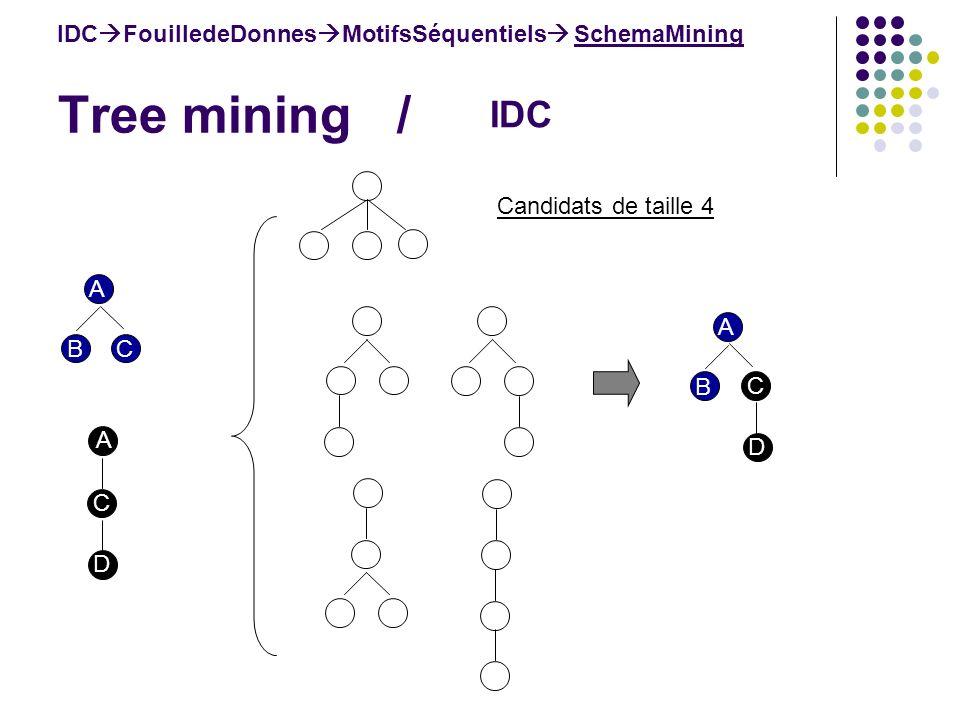 Tree mining / IDC FouilledeDonnes MotifsSéquentiels SchemaMining IDC Candidats de taille 4 A BC A C D A B C D